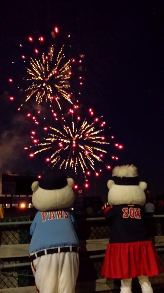 Paws fireworks