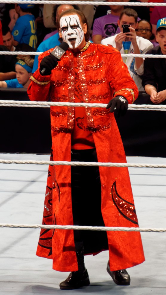 Sting Wrestler